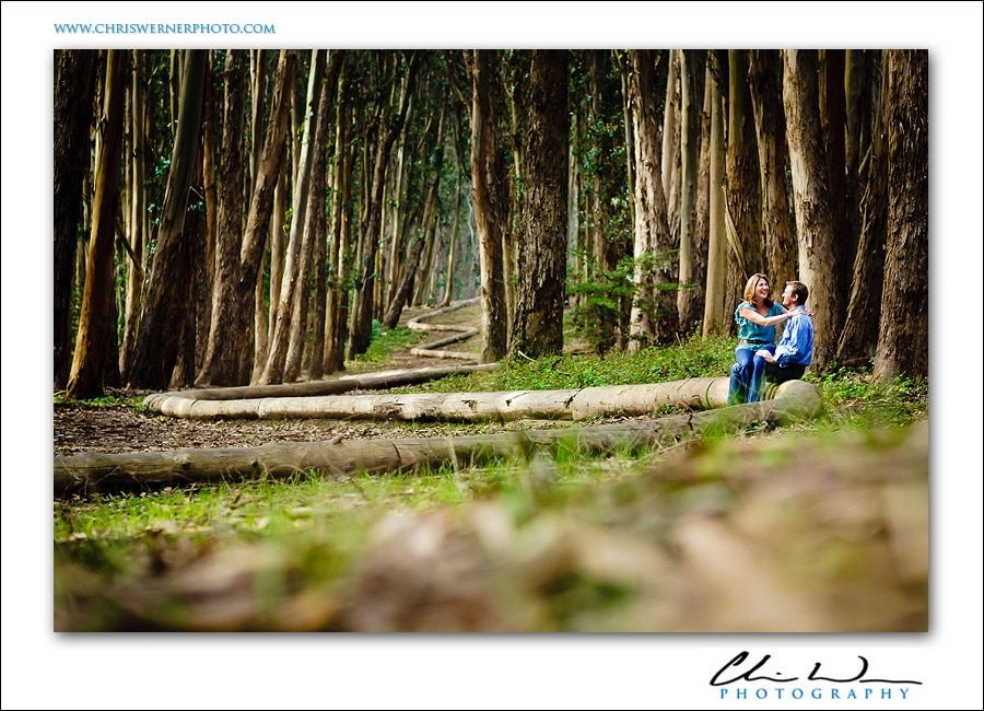 San Francisco engagement photos in the forest of the Presidio.