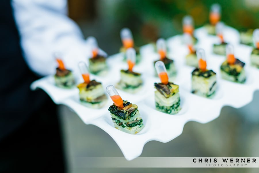 Lake tahoe wedding reception appetizers and hors doeuvres california cuisine wedding appetizers with tabasco sauce junglespirit Gallery