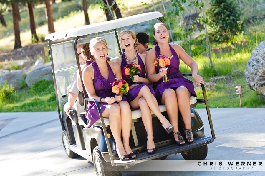 Purple bridesmaid dresses photo.