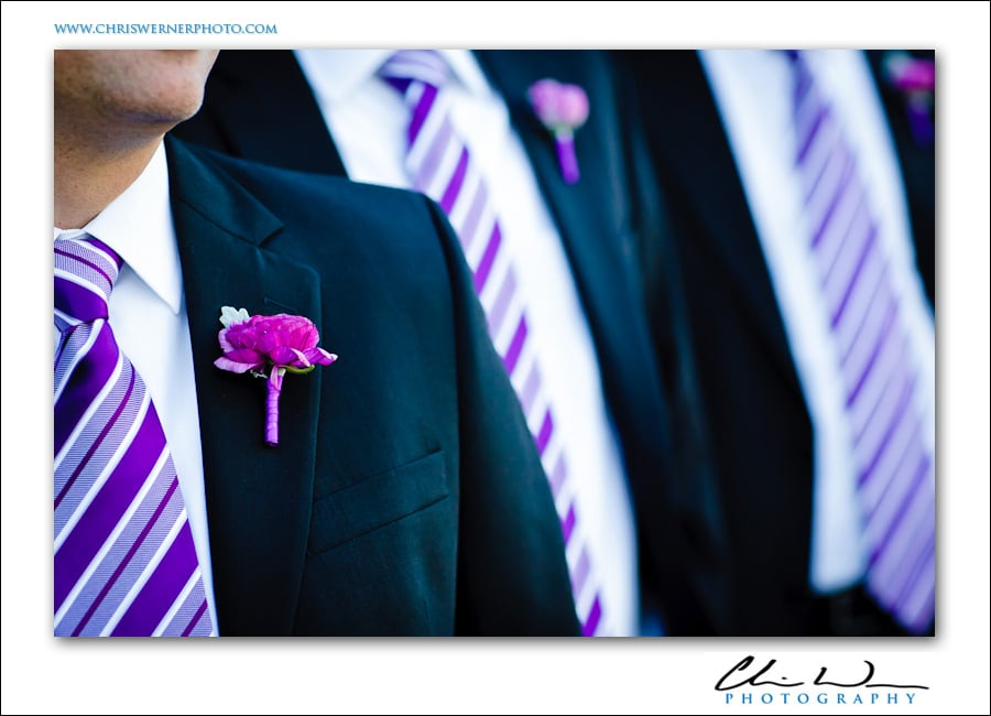Photograph of the groomsmens' boutionnieres and ties, Presidio Wedding Photography.