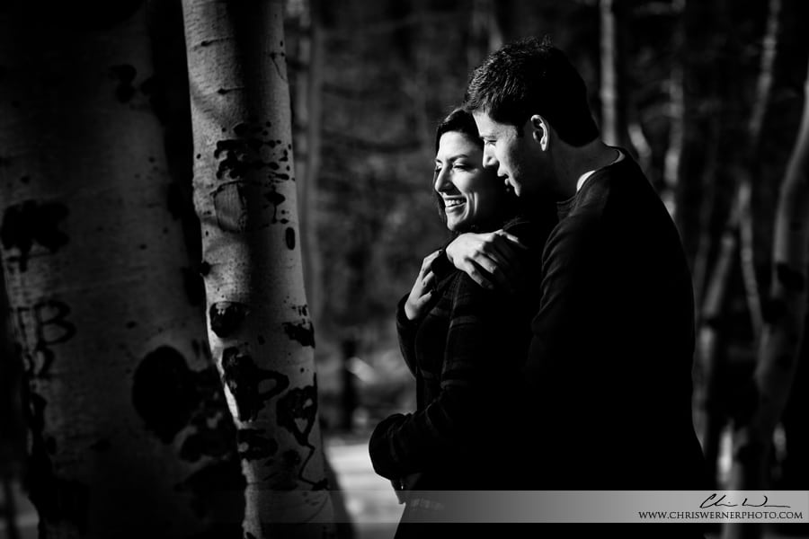 Outdoor couples portraits in Lake Tahoe, Truckee, and Tahoe City.